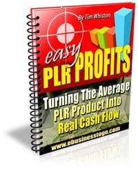 Easy PLR Profits 2