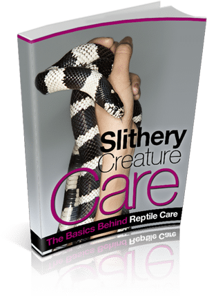 Slithery Creature Care 10