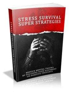 Stress Survival Super Strategies 2