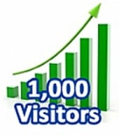 1,000 Visitors In One Month